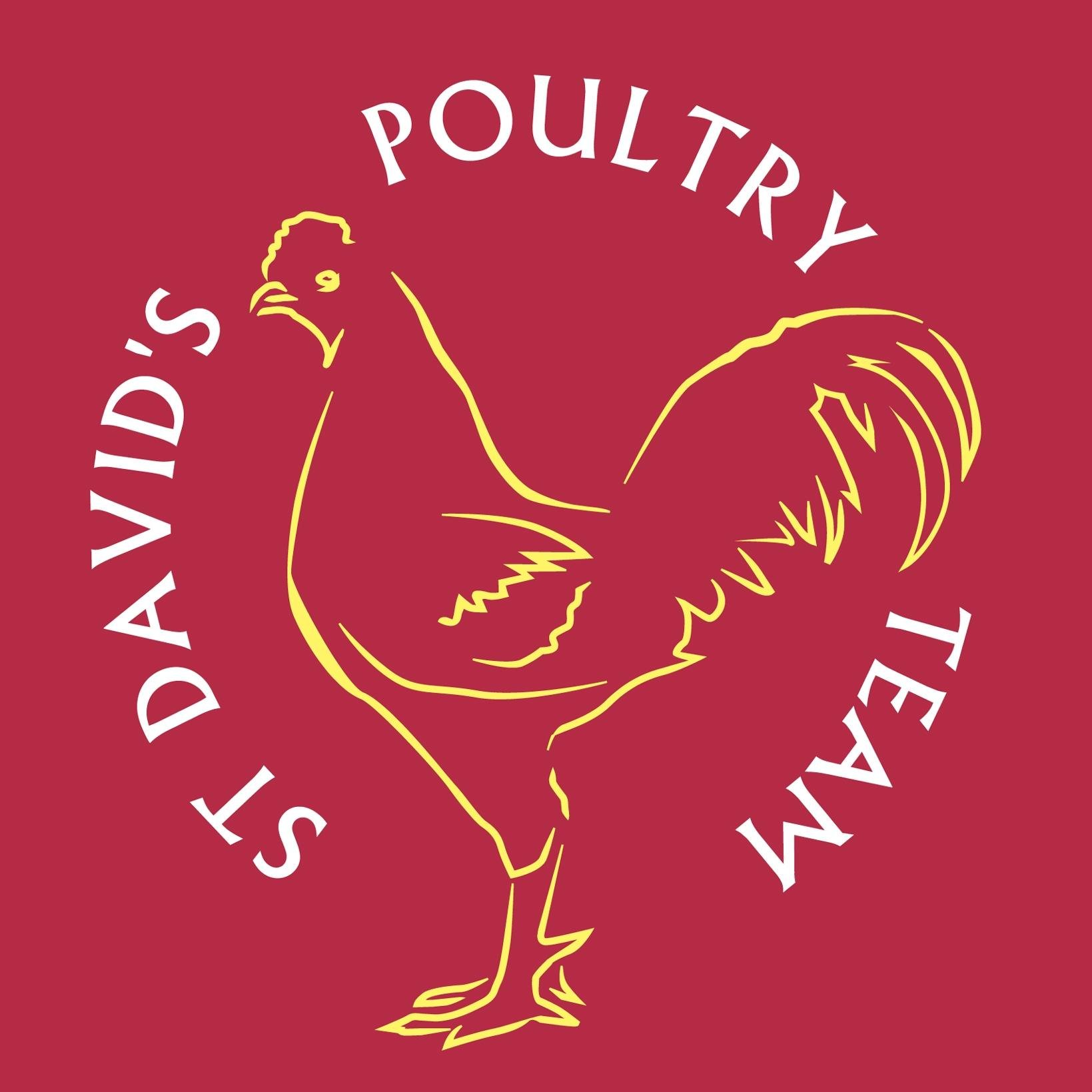 St David's Poultry Team logo