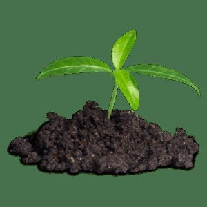 Better Soils